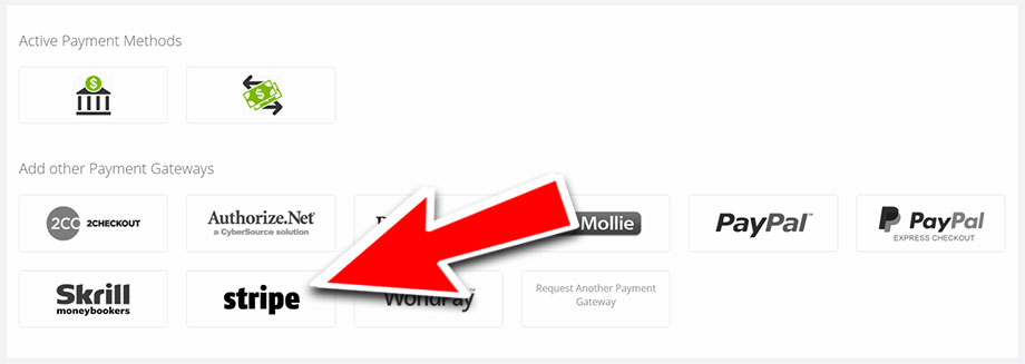 Stripe Payments with VEVS Website Builder
